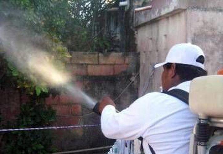 Un trabajador del gobierno del Estado al fumigar una casa para evitar la proliferación del mosquito del dengue. (Milenio Novedades)