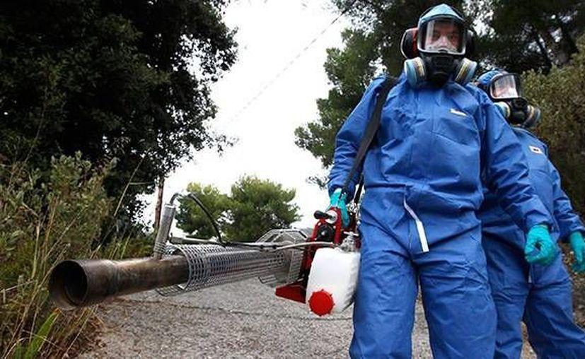 El experto sostiene que el virus podría propagarse más rápido si se compara con otras infecciones. (Archivo/Reuters)
