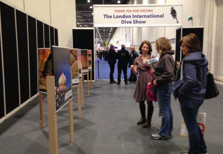 La exposición 'Bajo las Aguas de Cozumel' se exhibe en el London Dive Show, de Inglaterra. (Cortesía)