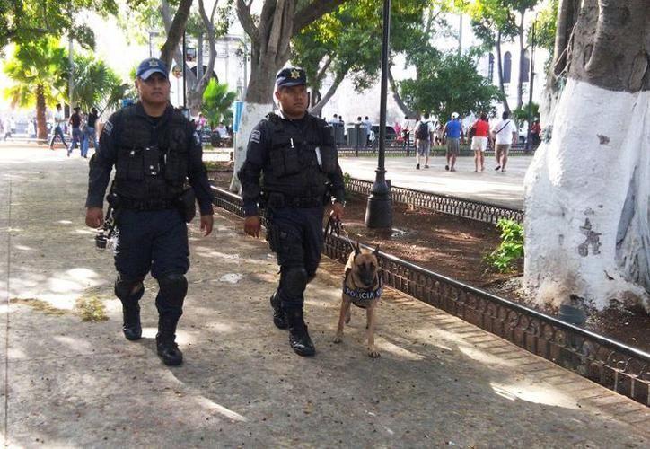 En México existe una alta percepción de seguridad en comparación con otras zonas del país. (SIPSE)
