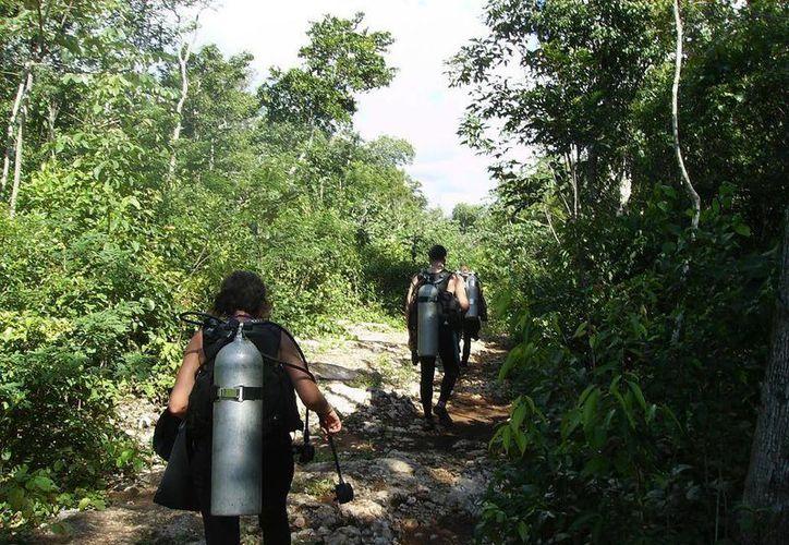 Los visitantes preservan la naturaleza en la Riviera Maya. (Daniel Pacheco/SIPSE)
