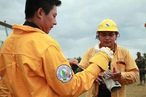 Combaten incendio forestal en reserva de Dzilam de Bravo