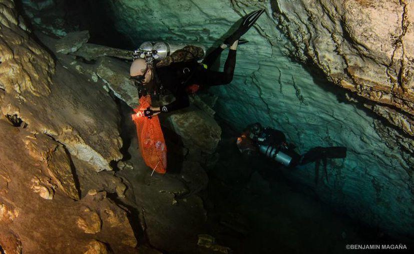 Fotografía de uno de los buzos  integrantes del equipo de limpieza en el interior del cenote San Marcos, en Sacalum. (Cortesía de Benjamín Magaña)