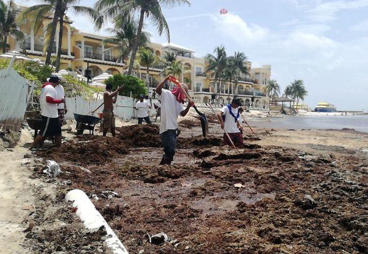 Las personas tratan de limpiar la zona más afectada. (Octavio Martínez/SIPSE)