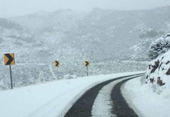 15 municipios de Chihuahua fueron declarados por la Segob en estado de 'emergencia', esto por los daños ocasionados durante las nevadas del 12 y 13 de este mes. (Archivo nortedigital.mx)