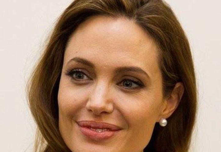 Un periodista croata acusó de plagio a Angelina Jolie (www.topnews.com/Archivo)