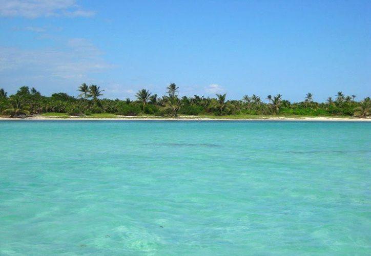 En esa región no se podrá llevar a cabo pesca comercial ni de consumo doméstico de flora y fauna acuática. (Internet)