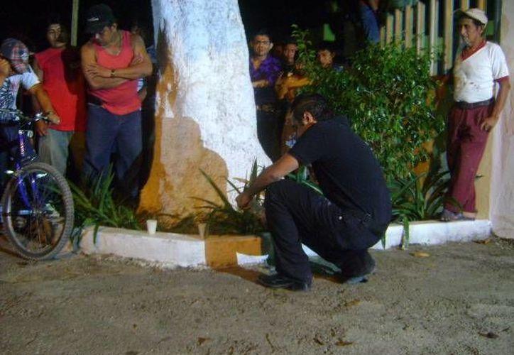 Junto a este árbol, ubicado en la puerta principal del cementerio de Umán, varias personas decían haber visto el fantasma de una joven. (Milenio Novedades)