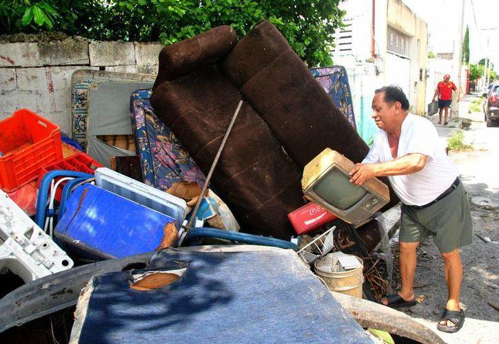 En Yucatán es continua la lucha contra el mosco transmisor del dengue. (Notimex)