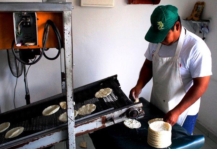 Las autoridades sanitarias vigilarán las tortillerías. (Daniel Pacheco/SIPSE)