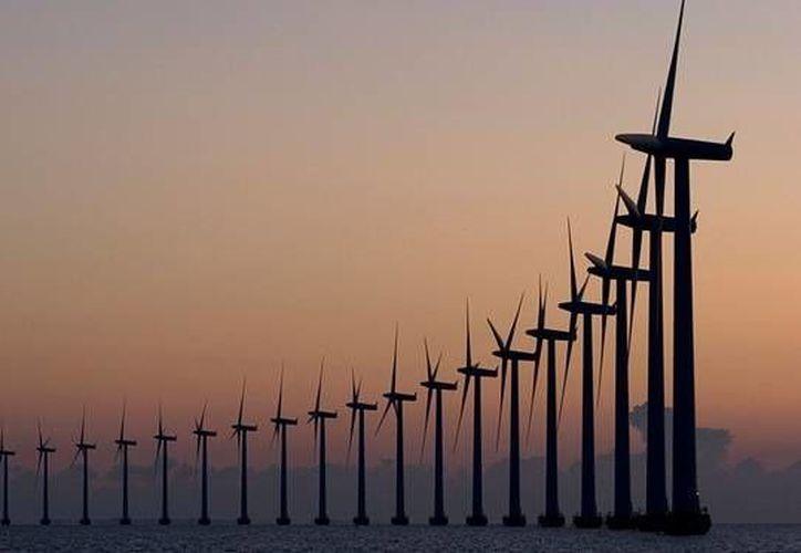 En México existe una alta dependencia de tecnologías de energías renovables de importación  (Imagen: Internet)
