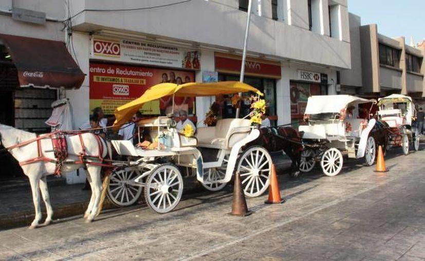 Para los románticos y en especial en este 14 de febrero, Día del Amor y la Amistad, un paseo en calesa en Mérida no tiene comparación. (Milenio Novedades)
