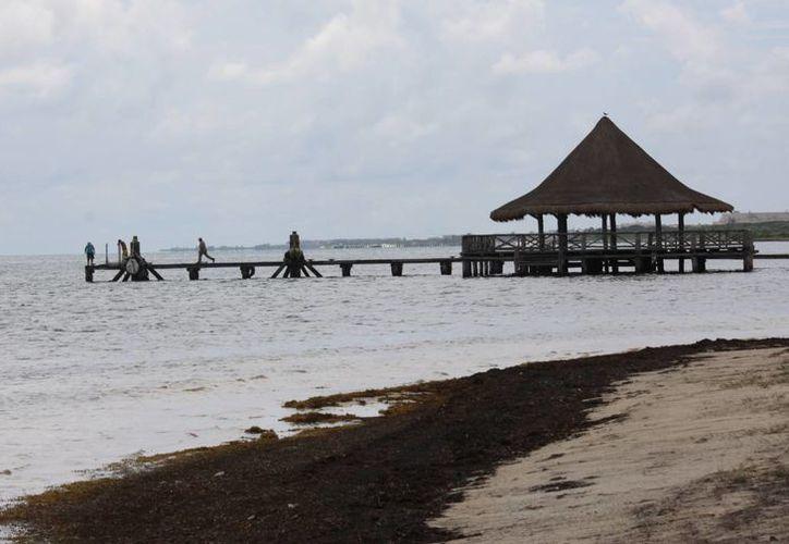 """Persigue Cancún reconocimientos como el """"Earth Check"""", de sustentabilidad. (Luis Soto/SIPSE)"""