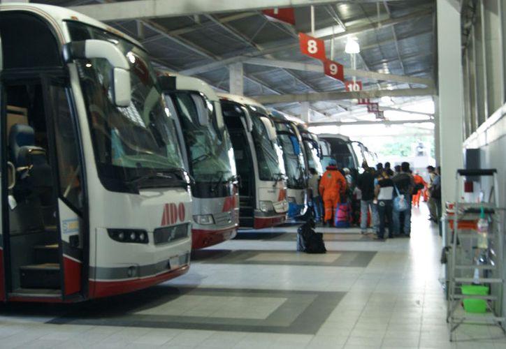 Llegaron alrededor de 18 autobuses procedentes de Chiapas, Tabasco y Veracruz a Playa del Carmen. (Contexto)