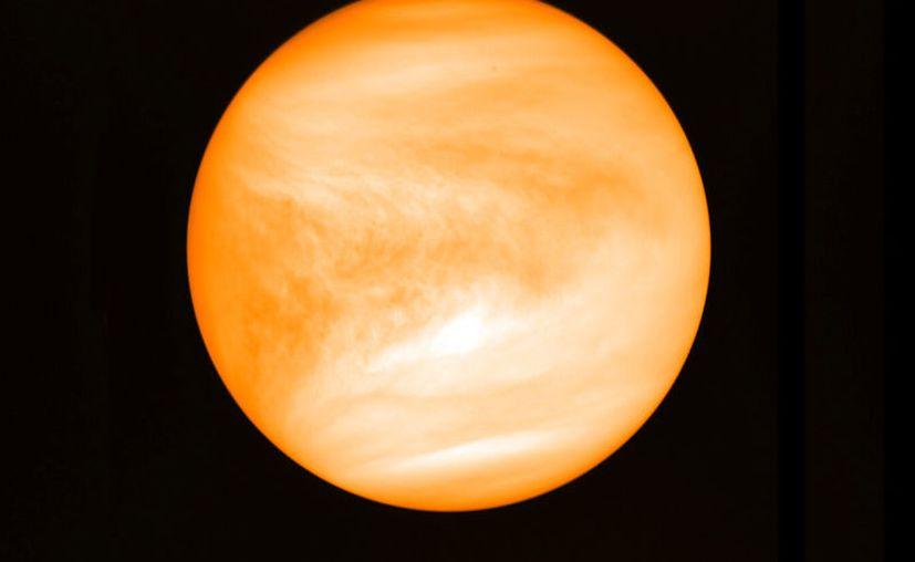 Foto de mayo de 2016 del planeta Venus proporcionada por el investigador Jane Greaves y captada por la sonda japonesa Akatsuki. (J. Greaves/Cardiff University/JAXA via AP)