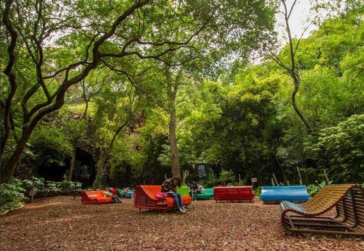 Imagen del Audiorama de la  Primera Sección del Bosque de Chapultepec. (twitter/@ChapultepecCDMX)