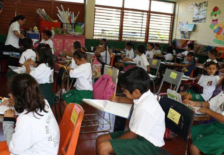 Más de 400 docentes no concluyeron el trámite para adjudicarse una plaza. (Harold Alcocer/SIPSE)