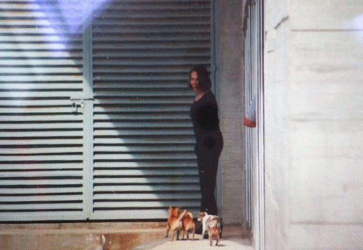 Florinda Meza, pasea a sus mascotas en la sala de espera del Aeropuerto. (Israel Leal/SIPSE)