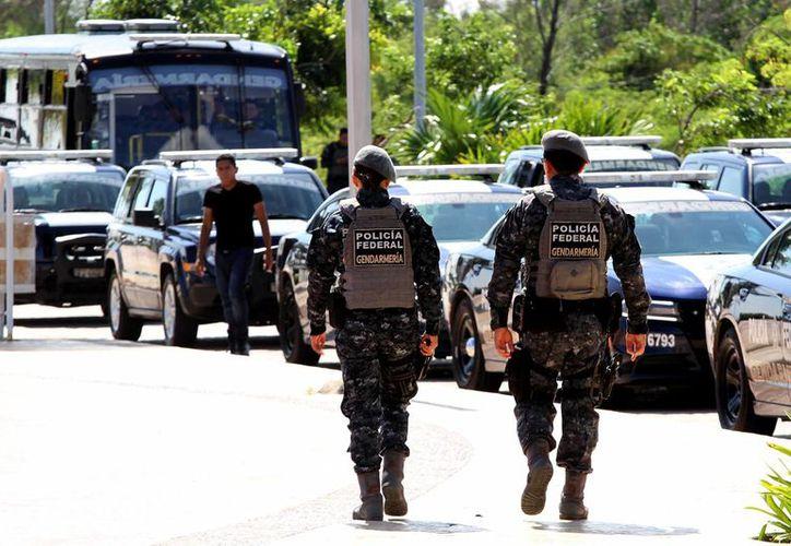 Piden a la Gendarmería a través de la Policía Federal mantener un proceso permanente de sensibilización y capacitación como cuerpo de trabajo. (Archivo/Notimex)