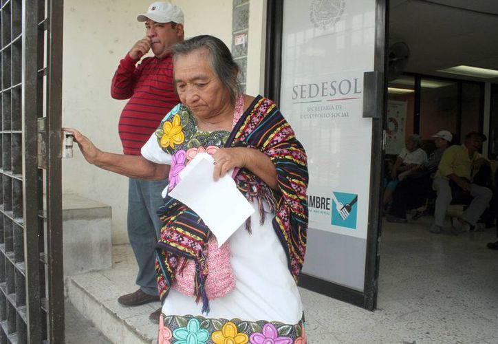 Los adultos mayores se mantiene a la espera de que la Sedesol efectúe los depósitos a tiempo. (Sergio Orozco/SIPSE)