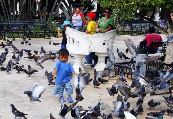 La seguridad y los espacios públicos favorecen la convivencia familiar. (Milenio Novedades)