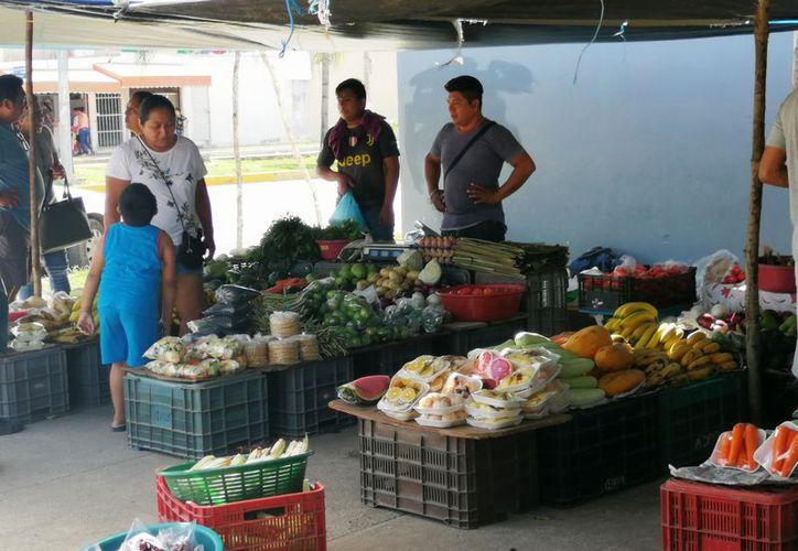 Ofrecen diferentes productos como flor de calabaza, elotes, chicozapotes, piñas, entre otros. (Octavio Martínez/SIPSE)