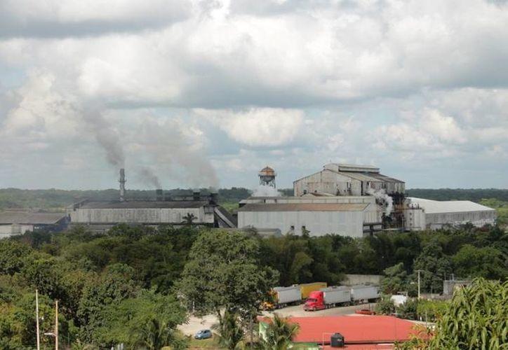 Empresas tendrán que cumplir con la Auditoria Ambiental y Auto Regulación Ambiental. (Ángel Castilla/SIPSE)