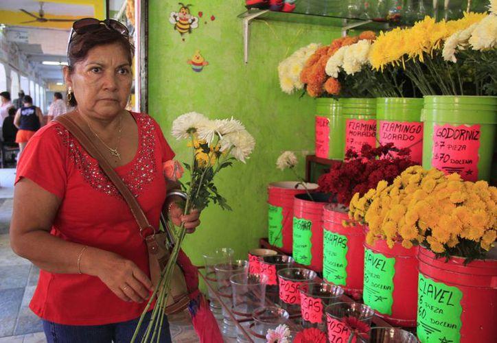 En el parque de Las Palapas el comercio estuvo regulado. (Tomás Álvarez/SIPSE)
