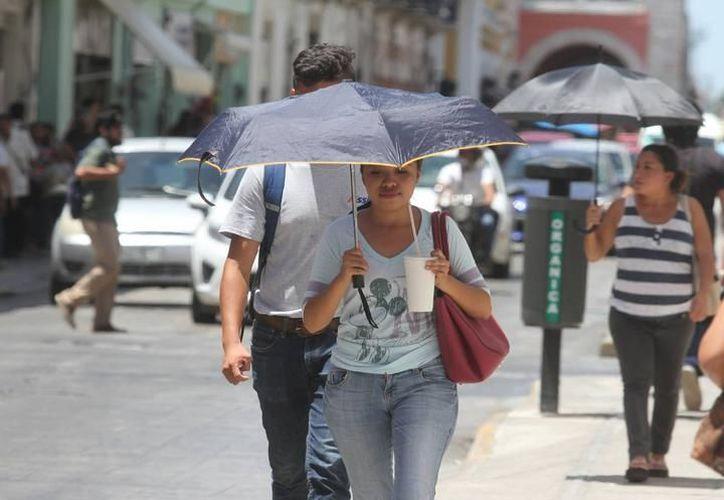 Las temperaturas en Mérida no llegan a los 40 grados, pero lo humedad en Mérida genera una sensación térmica mucho mayor. (SIPSE)
