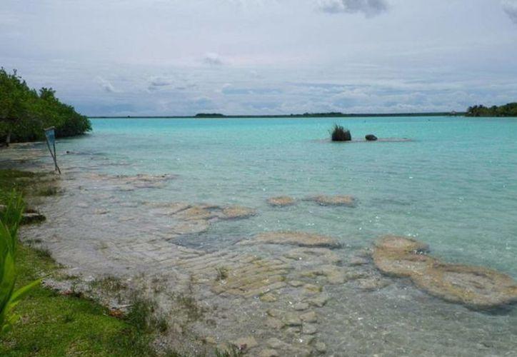 Los estromatolitos son 'piedras vivientes' que producen oxígeno, se encuentran la laguna de Los Siete Colores de Bacalar. (Javier Ortiz/SIPSE)