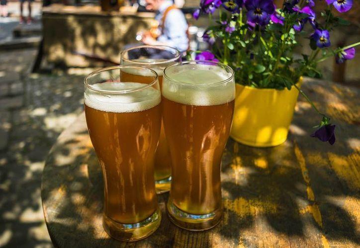 A pesar de que la cerveza es una bebida baja en alcohol, no es menos peligrosa que el vodka o el whisky. (píxabay.com)