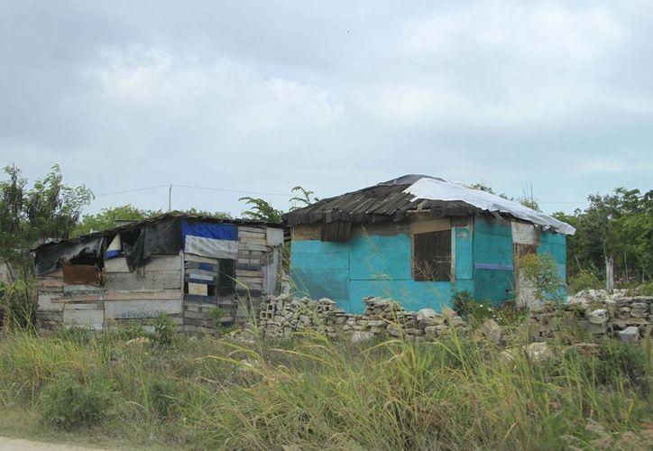 Una casa endeble está hecha con cartón o tablas, que el techo es de lámina de cartón o zinc o no tiene cimientos. (Harold Alcocer/SIPSE)