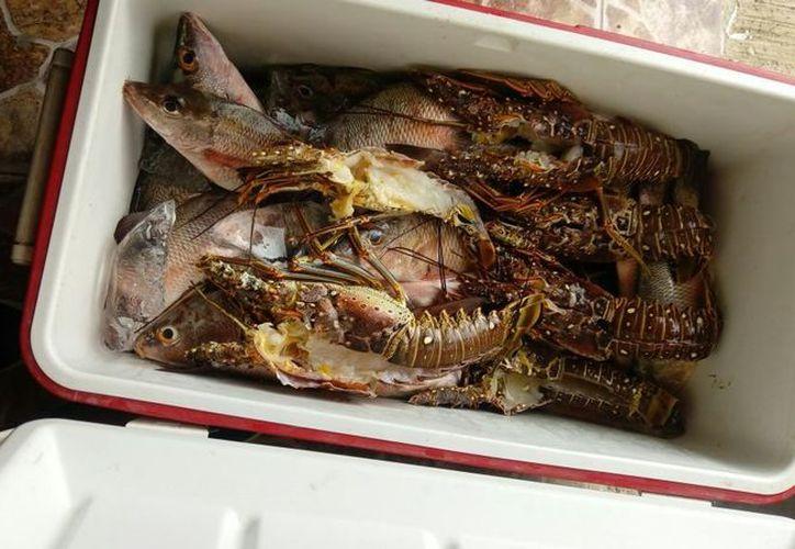 La pesca la realizan en la laguna arrecifal interior de la reserva. (Joel Zamora/SIPSE)