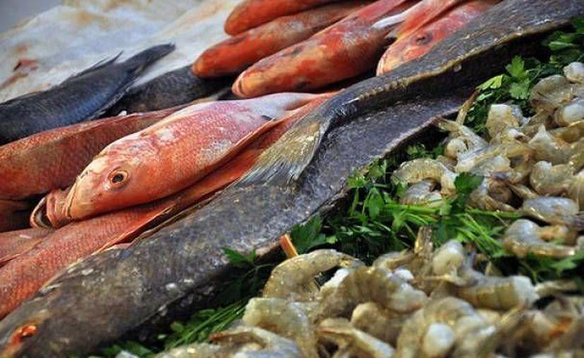 Los productos del mar serán verificados para ofrecer calidad a los consumidores. (http://www.lja.mx)