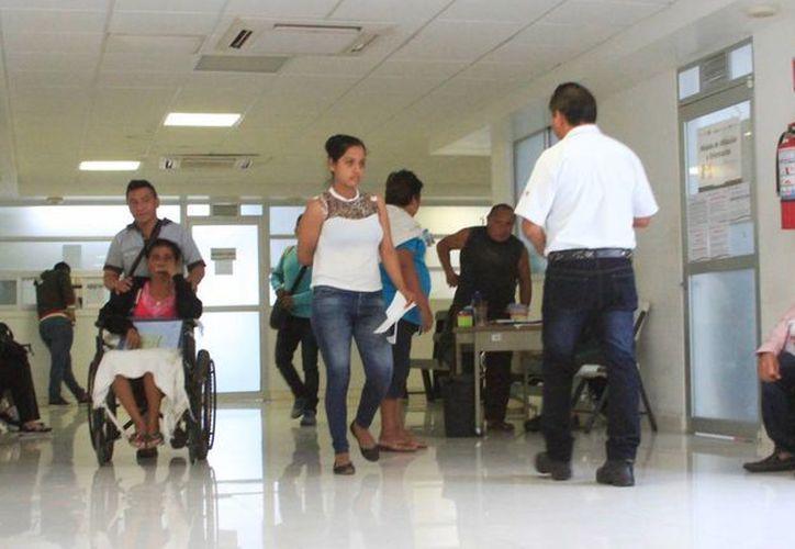 Los 50 mil ciudadanos saldrán de los nuevos afiliados al programa de la Secretaría de Desarrollo Social. (Ángel Castilla/SIPSE)