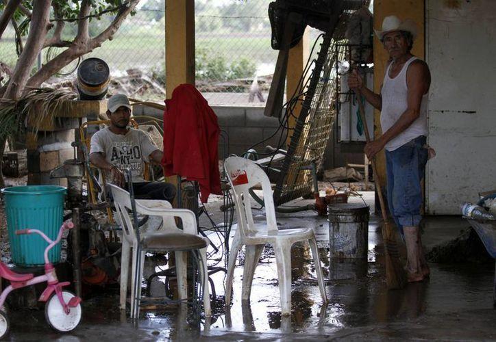 Damnificados en Sinaloa. (Notimex)