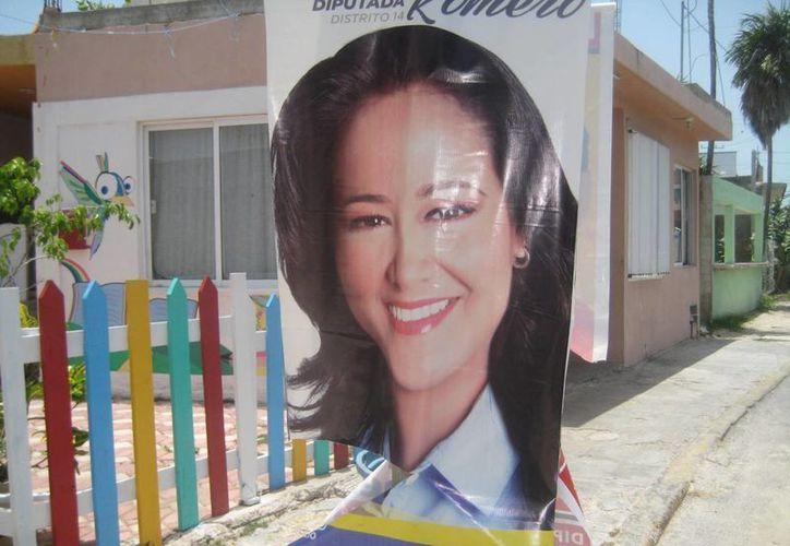 Indican que no todos los partidos políticos han retirado la propaganda. (Lanrry Parra/SIPSE)