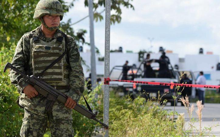 Varios paquetes de droga fueron encontrados en un terreno de Cozumel este viernes. (Gustavo Villegas/SIPSE)
