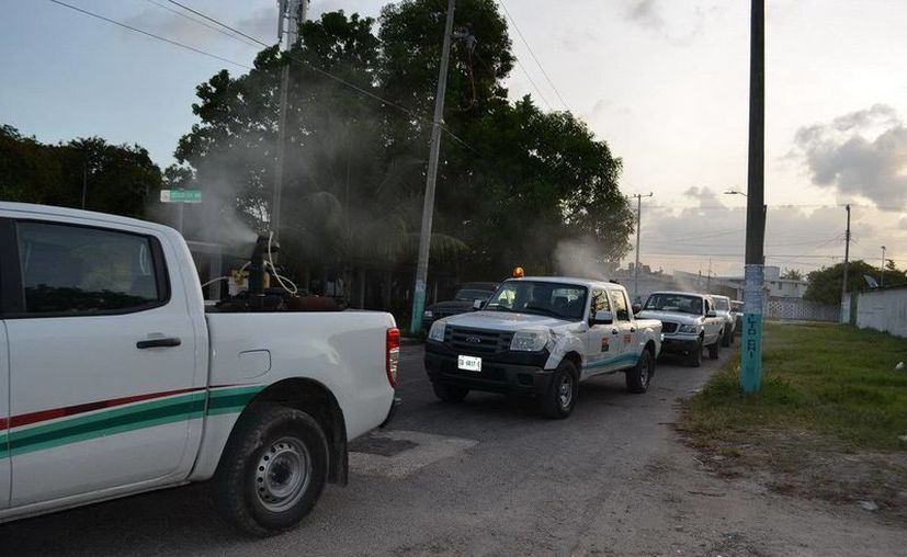 Diferentes colonias de Chetumal son nebulizadas para eliminar al mosquitos transmisor del dengue. (Cortesía)