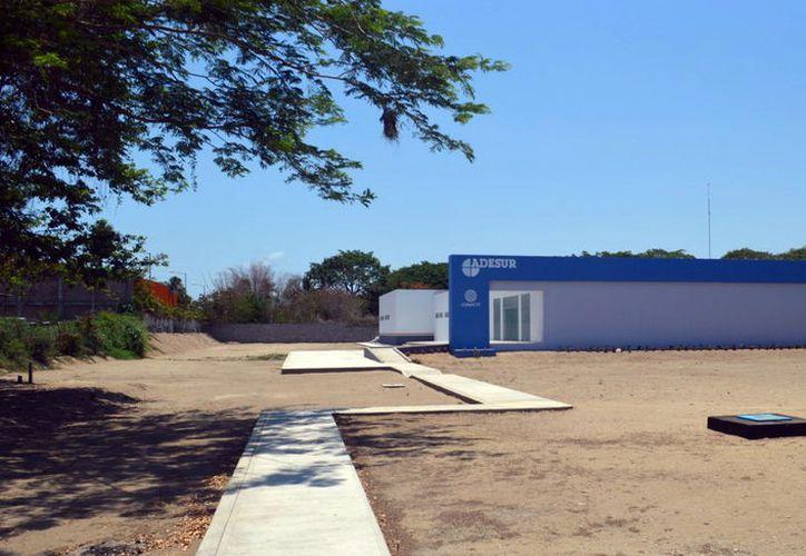Especialistas del CICY colaboran con otros tres centros de investigación pertenecientes al Conacyt. (Foto: Milenio Novedades)