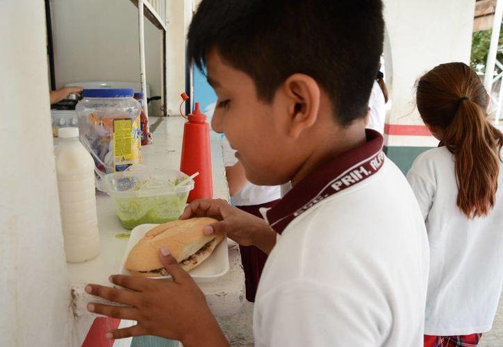 Una de las principales causas es la descomposición de los alimentos. (Luis Soto/SIPSE)