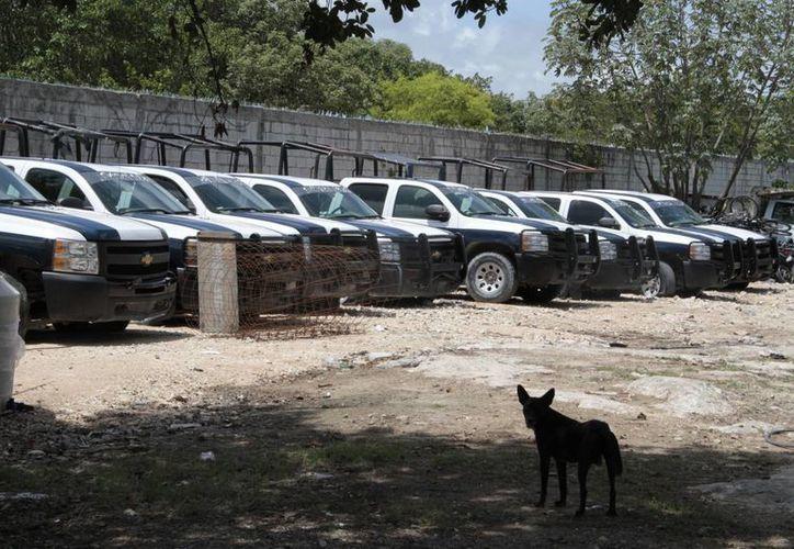 En total son 200 vehículos de Seguridad Pública catalogados como inservibles. (Tomás Álvarez/SIPSE)
