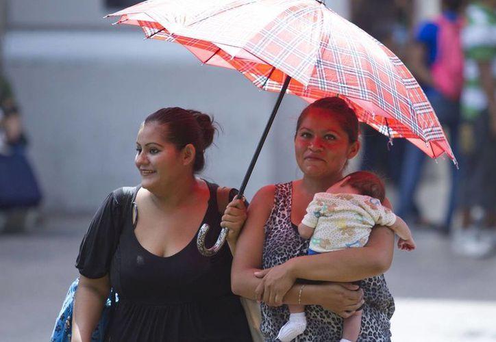 Después de cuatro días al hilo con temperaturas que llegaron a 40 grados o más, el sábado el calor fue un poco menor, pero la Conagua pronostica que este domingo las máximas volverían a ser de alrededor de 40 grados. (Amílcar Rodríguez/Milenio Novedades)