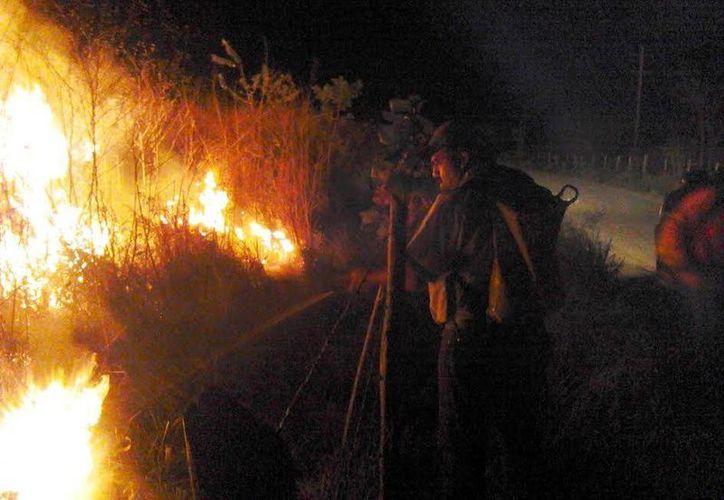 En esta temporada los incendios se han combatido de manera puntual. (SIPSE)