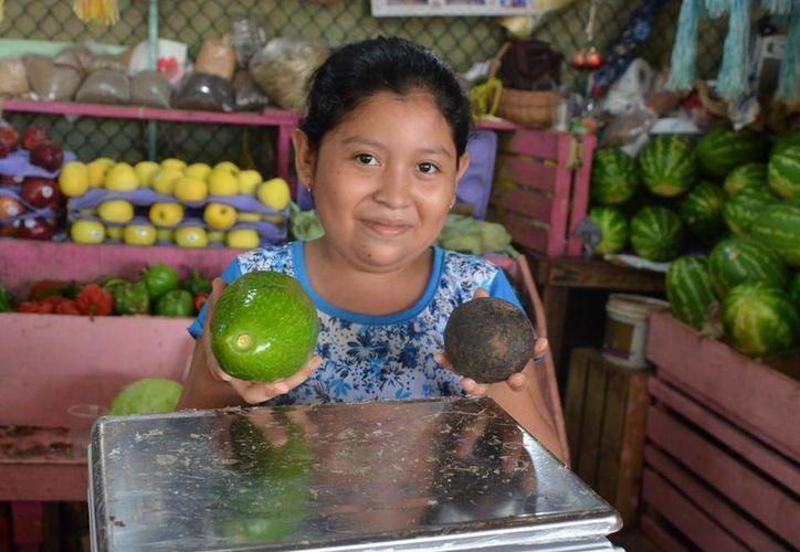 Mientras que el aguacate hass cuesta más de 20 pesos por pieza, el local se vende en máximo 10 pesos cada uno. (Tony Blanco/SIPSE)