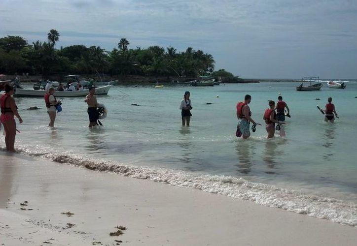 Akumal será nombrado por decreto federal refugio de la tortuga marina. (Sara Cauich/SIPSE)