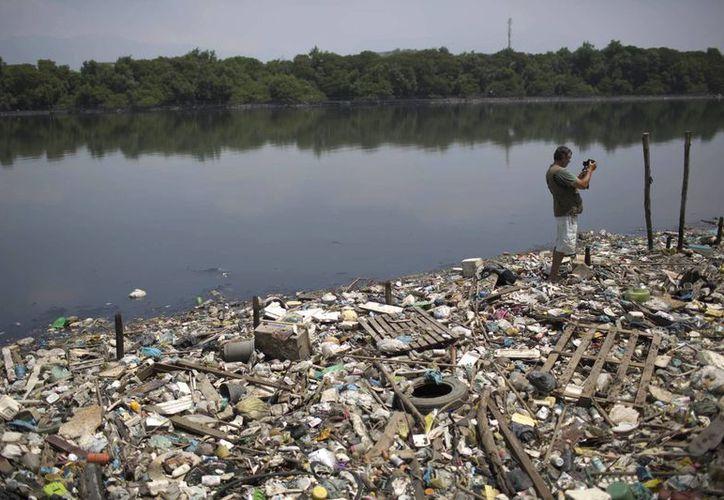 Señalan que los lagos de la zona están a menudo llenos de peces muertos. (Agencias)