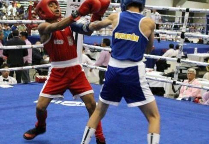 La calidad del boxeo yucateco va en aumento a través de los años. (SIPSE)