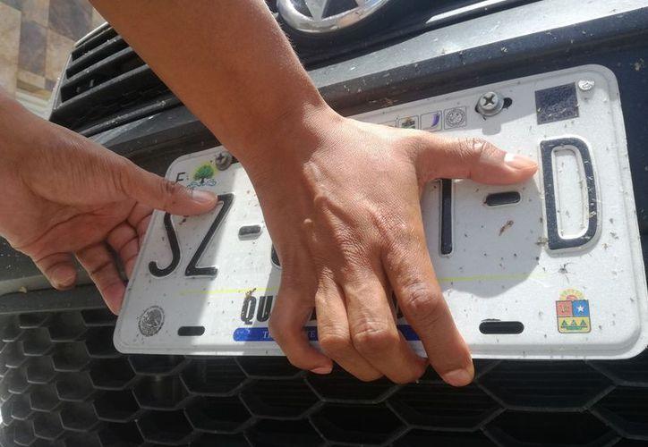 Vecinos de diferentes fraccionamientos de Playa del Carmen se ponen en alerta ante el robo frecuente de placas de automóvil. (Foto: SIPSE)
