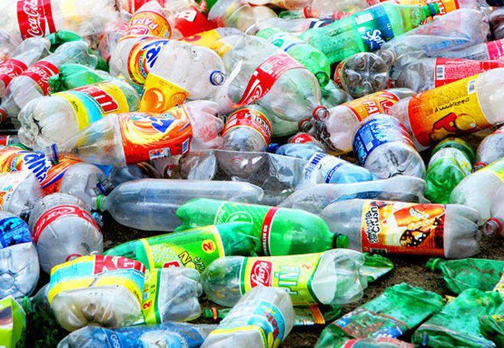 40% de la basura que se genera en Quintana Roo (mil 671 toneladas), son residuos inorgánicos y (dos mil 753) son orgánicos. (SIPSE)